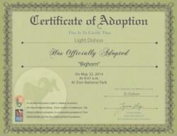 Adopt-a-Bighorn Adoption Certificate